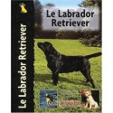 Le labrador du retriever