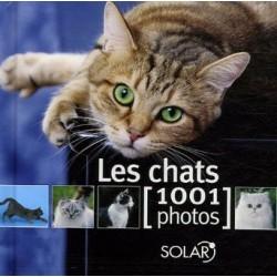 LES CHATS 1001 PHOTOS
