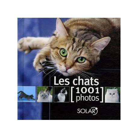 LES CHATS 1001 PHOTOS