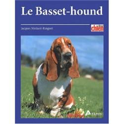 Le basset hound