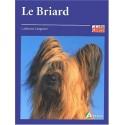 Le Briard