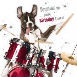 Carte postale humoristique anniversaire.Amstaff