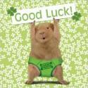 Carte postale représentant un cochon d'Inde porte bonheur