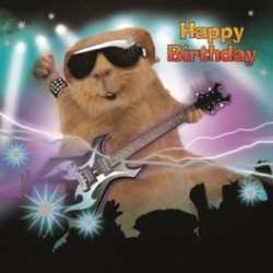 Carte postale représentant un cochon d'Inde guitariste