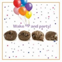 Carte postale représentant les hérissons sont de la fête