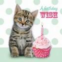 Carte postale représentant le chaton d'anniversaire