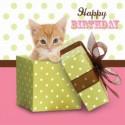 Carte postale représentant le chat cadeau