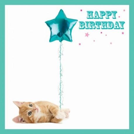 Carte postale représentant la bonne étoile du chaton
