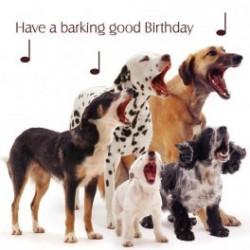 Carte postale représentant les aboiements d'anniversaire