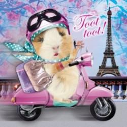 Carte postale représentant paris scooter pour le cochon d'Inde