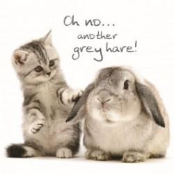 Carte postale représentant lapin gris et chaton gris