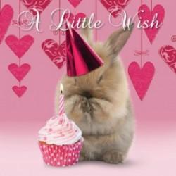 Carte postale représentant voeux de lapin