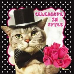 Carte postale représentant le chat stylé