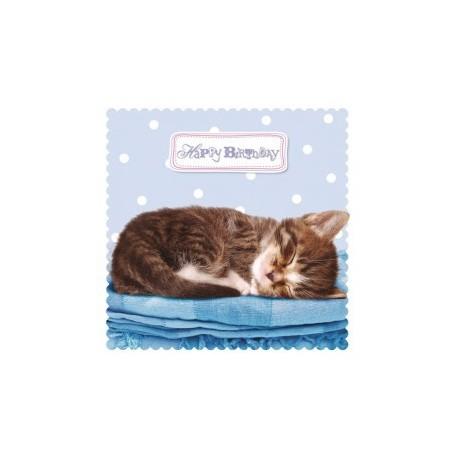 Carte postale représentant le doux sommeil du chaton