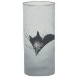 VERRE CHAT DUBOUT - GROS DODO