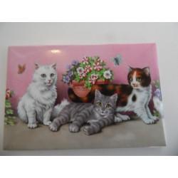 Magnet représentant trois chatons dans les fleurs sur fond rose