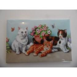 Magnet représentant trois chatons dans les fleurs sur fond bleu
