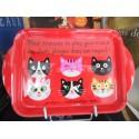 Mini plateau Fox trot sur le thème du chat
