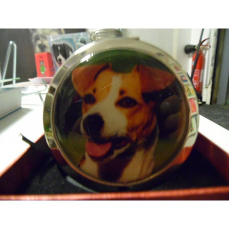 Miroir de poche Jack russell terrier
