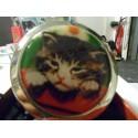 Miroir de poche chaton attendrissant