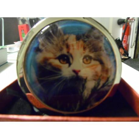 Miroir de poche chat persan