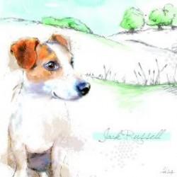 Carte postale représentant un jack russell terrier aux champs