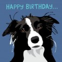 Carte postale ANNIVERSAIRE BORDER COLLIE