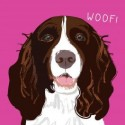 Carte postale ANNIVERSAIRE - ENGLISH SPRINGER SPANIEL