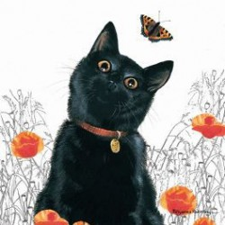 Carte postale LE PRINTEMPS DU CHAT NOIR