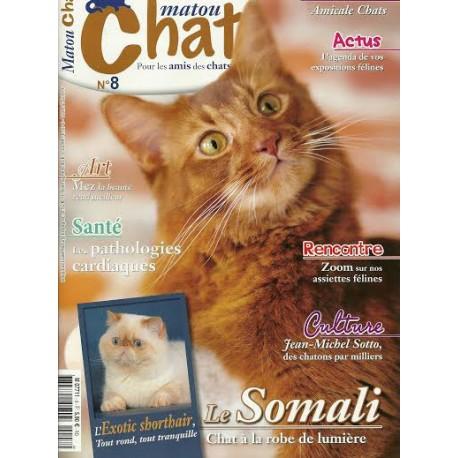 Matout Chat n°8