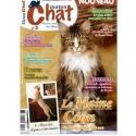 Matout Chat n°3