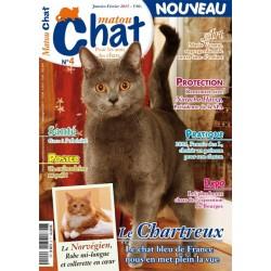 Matout Chat n°4