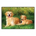 Tapis GOLDEN RETRIEVER avec photo couleur