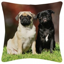 Coussin Berger Allemand