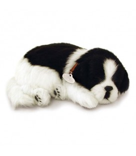 Peluche Perfect Petzzzz BORDER COLLIE