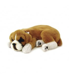 PELUCHE PERFECT PETZZZ BOXER