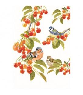 OISEAUX DU PRINTEMPS. Torchon décoratif représentant les oiseaux du printemps