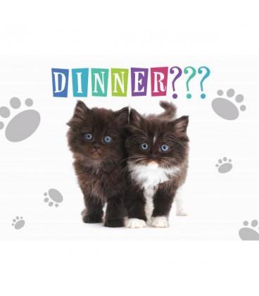 Set de table les chatons ont faim