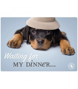 Set de table le rottweiler attend son repas