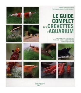 Guide complet des crevettes d'aquarium