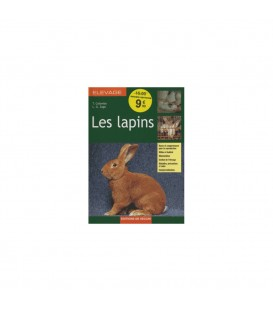 Elevage - Les lapins