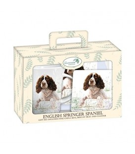 SERVICE A THE OU A CAFE ENGLISH SPRINGER SPANIEL