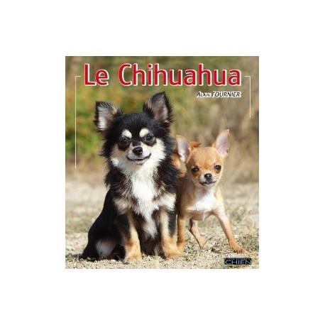 Le chihuahua