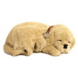 Peluche Perfect Pezzzz golden retriever