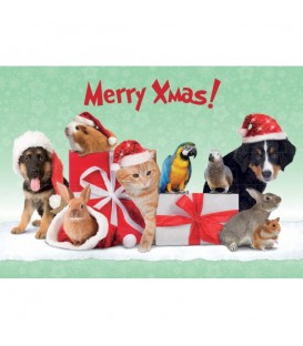 Lot de 6 sets de table Merry Christmas decorés d'animaux différents