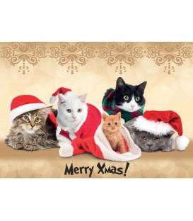 Lot de 6 sets de table Merry Christmas decoré de chats