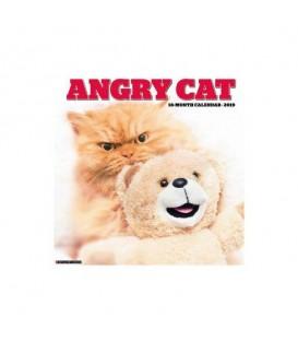 Chats en colère 2019