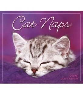 Agenda éphéméride Siestes de chats 2019.