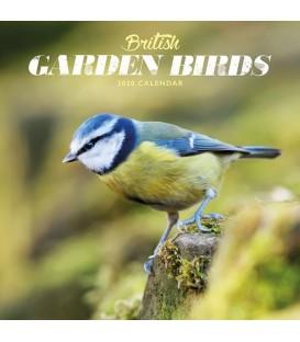 Mini calendrier oiseaux du jardin 2020