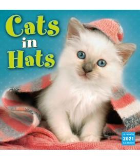 Chats en chapeaux 2021